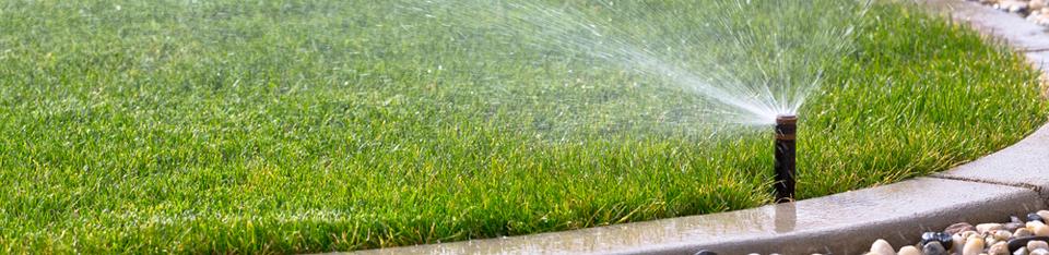 Pure Rain Irrigation